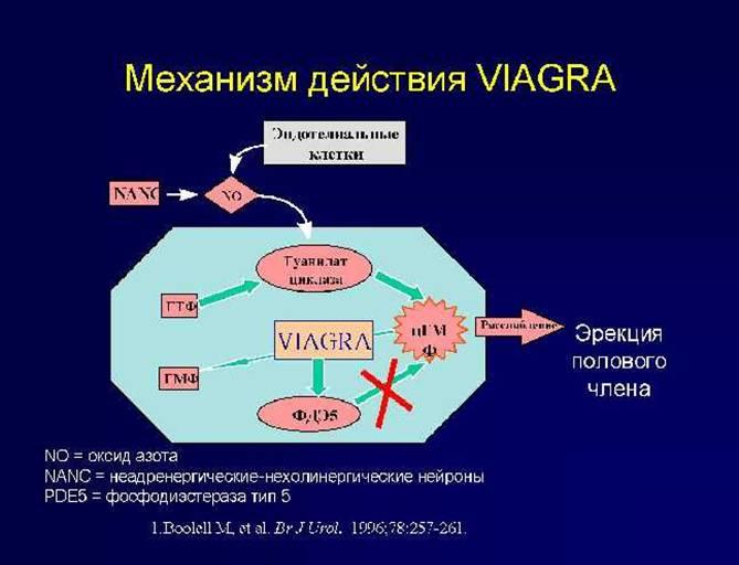 Viagra Moa